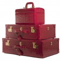 Wharton Travel Case_Cielle Travel Case